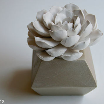 SALE: White Succulent Sculpture in Modern Faceted Container, Tabletop Centerpiece, Desktop Garden Accessory