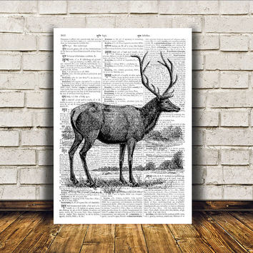 Deer poster Animal art Dictionary print Wall decor RTA104