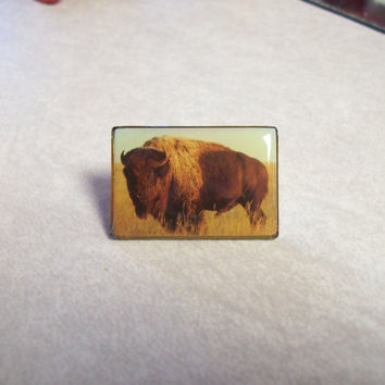 Vintage 60s 70s American Buffalo Bison Lapel Pin / Real Photo Pinback Pin / Western Tourist Souvenir / Tatanka Buffalo Brooch Button