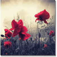 "Walmart: Trademark Art ""Red For Love"" Canvas Wall Art by Philippe Sainte-Laudy"