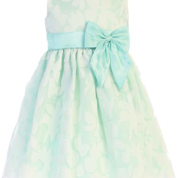 Mint Green Satin & Floral Burnout Organza Overlay Easter Spring Dress (Baby, Toddler & Girls Size)