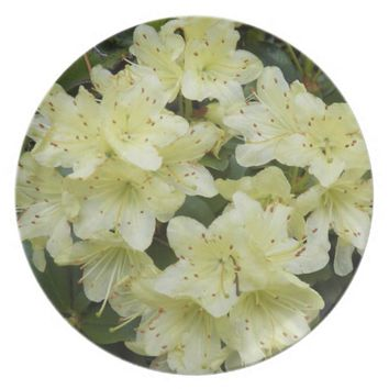 Yellow Rhododendrons Floral Plate