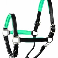 Halters,chain lead,fly mask,and much more...