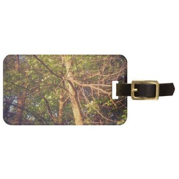 Looking Up Luggage Tag