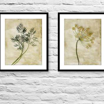 Food photography still life photograph art for kitchen set of 2 photo prints fennel kitchen herbs minimalist wall art rustic wall decor