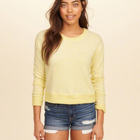 Girls Cropped Crew Sweatshirt | Girls Now Trending | HollisterCo.com
