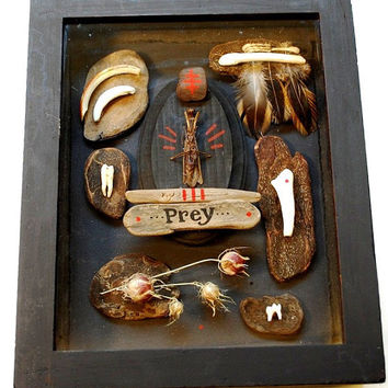 tender prey: mantis taxidermy shadowbox with teeth and driftwood by paperanji