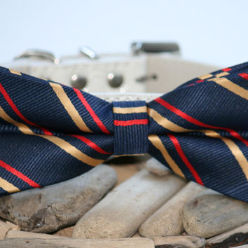 Navy Gold Dog Bow Tie with collar, Navy Blue, Gold, Red Wedding