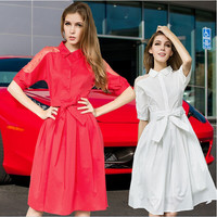 Mesh Sleeve Button-Up Drawstring Waist Pleat Dress