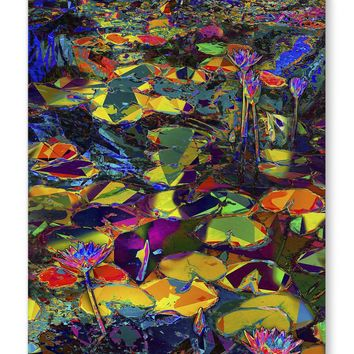 WATER LILIES AT THE MIAMI BEACH BOTANICAL Canvas Art By Murray Eisner