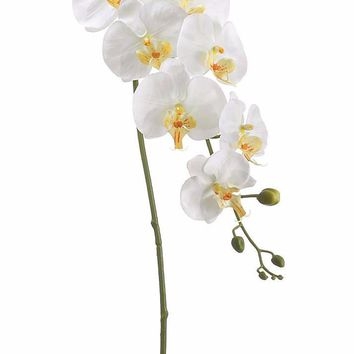 """Artificial Orchids Phalaenopsis in Cream Yellow40"""" Tall"""