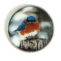 "The Mad Bluebird Sun Catcher, Glassmasters Bird Print ""Stained Glass"" Window Hanging, USA"