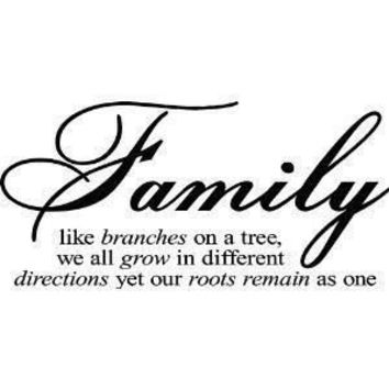 Family Wall Words & Quotes