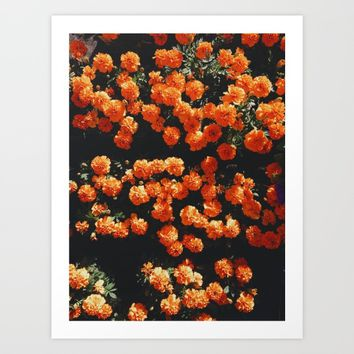Orange Bloom Art Print by Mixed Imagery