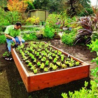 How to build a raised bed for your garden - Sunset.com