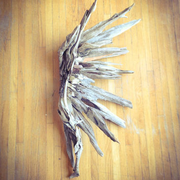 Driftwood Angel wing, Driftwood Art, Driftwood Sculpture, Wall Art, Reclaimed Driftwood, Driftwood Wing