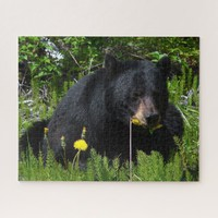 Black Bear Jigsaw Puzzle