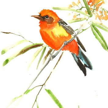Flame Colored Tanager, Original watercolor painting, 12 X 9 in, orange red yellow green wall art
