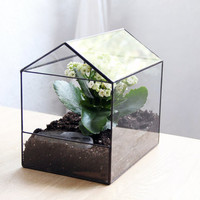 "glass terrarium ""house"""