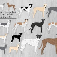 Greyhound Clipart Italian Greyhounds Illustration Sighthound Racing Dogs Digital Greyhound Drawings English Dog Breed Pet Scrapbook Graphics