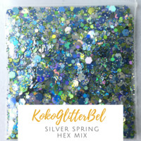 Holographic Glitter Hex- Silver Spring