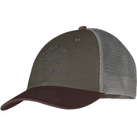 Patagonia Arched Collegiate Logo LoPro Trucker Hat
