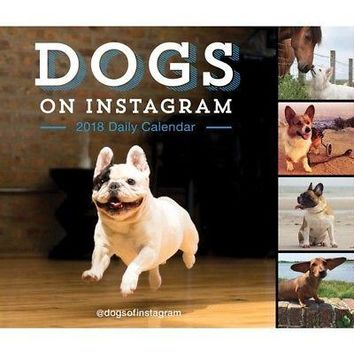 Dogs on Instagram Desk Calendar, Assorted Dogs by Chronicle Books
