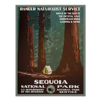 Vintage travel poster ~ WPA Sequoia National park