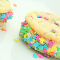 Such Springtime Confetti Cookie-Wiches- Limited Edition- 1 Dozen