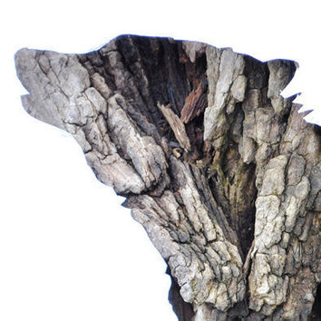 Wolf Silhouette In Bark  Woodland Animal Rustic Decor by wildpulp