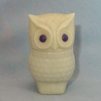 Secret Compartment Owl Stash Jar PURPLE EYES by ArtZodiac on Etsy