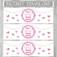 Baby Girl Shower Favors | Instant Download | Water Bottle Labels | Napkin Rings | Soap Wrappers |  DIY | Stickers|  Baby Girl Clothesline