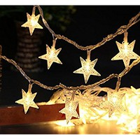 Outdoor Battery Operated String Lights,Star Shaped 8 Model Remote Dimmable Timer Waterproof 40 Leds,14Ft Rope Twinkling Fairy Lights for Bedroom,Garden Wedding Party Decoration by (1 Set/ Warm White)