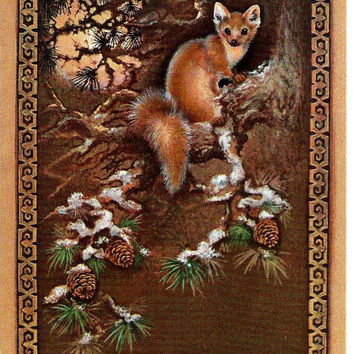 Squirrel - Vintage  Russian Postcard Soviet
