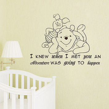 Winnie the Pooh Wall Decal I Knew When I Met You Nursery Bedroom Decor DS441