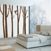 Ik103 Wall Decal Sticker Room Decor Art Mural Squirrel Woods Birch tree Forest Bedroom Interior