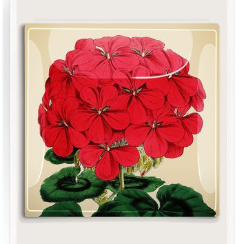 Regal Red Geranium Decoupage Glass Tray