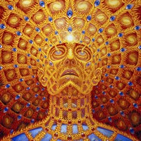 """Trippy Face Wall Poster 32x24"""" 17x13"""""""