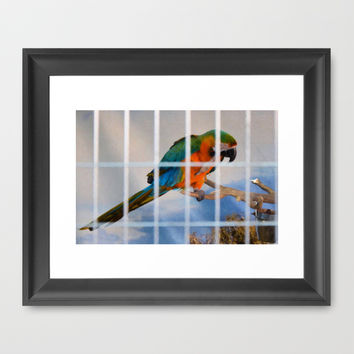 Parrot in a cage Framed Art Print by Lanjee