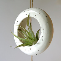 Handmade medium white round hanging O-planter. Terrarium, rustic home decor, air plant, hanging contemporary plant holder. Back in stock!