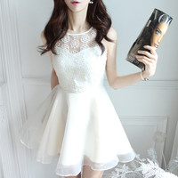 korean New Style Lace Embroidery Dress