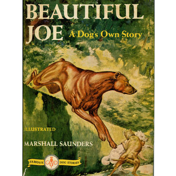 Vintage Book - Beautiful Joe - A Dog's Own Story -1890's Fiction