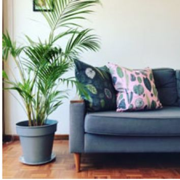LUXE Foliage on Pink/Green Cushion Covers