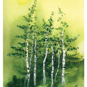 Tranquil Grove - Art Print birch trees summer forest natural landscape green aspen leaves watercolor painting cottage decor Oladesign 5x7