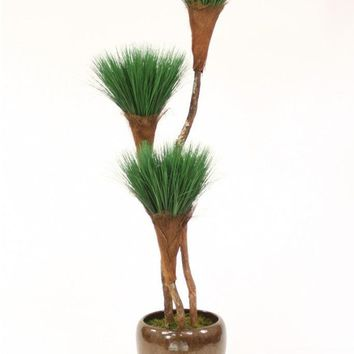 7' Grass Pom Pom Tree X 3 In Glazed Mocha Stoneware Pot