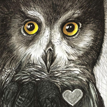 Owl Art / Original Framed Illustration/ Created by hand One of a kind / Ink 8x 10 Signed Maine Artist Chrissie Hues Hughes  free shipping