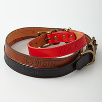 Graphic Image Inc Personalized Dog Collar