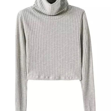 Light Gray High Neck Long Sleeve Knit Cropped Jumper