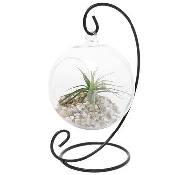 Charming Clear Glass Hanging Planter Terrarium Globe / Tea Light Candle Holde...