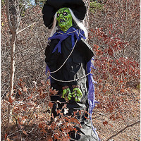 6 Ft Tree Hugger Witch - Decorations - Spirithalloween.com
